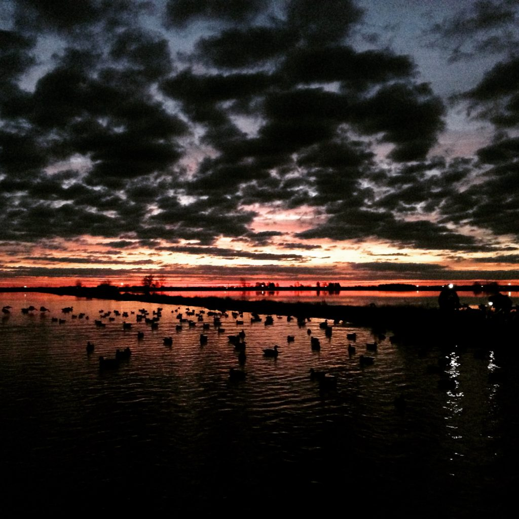 Bootheel Sunrise